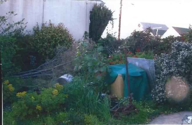 Garden - BEFORE (dragged) 1